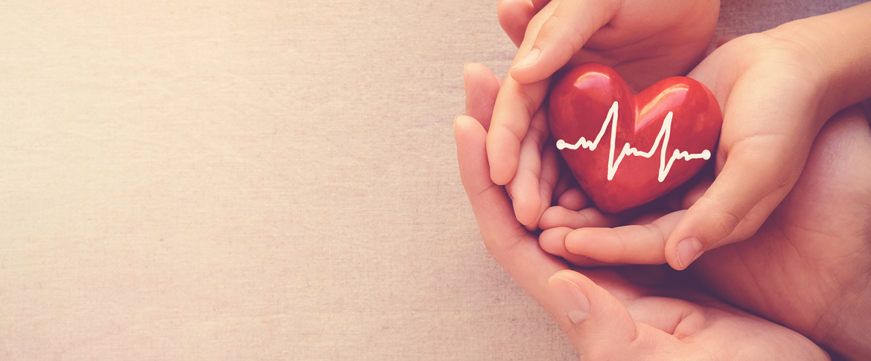 kardioloski pregled i UZ srca